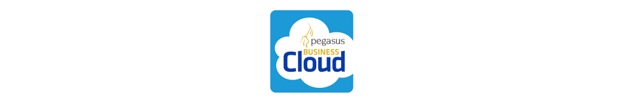 Pegasus Business Cloud Banner