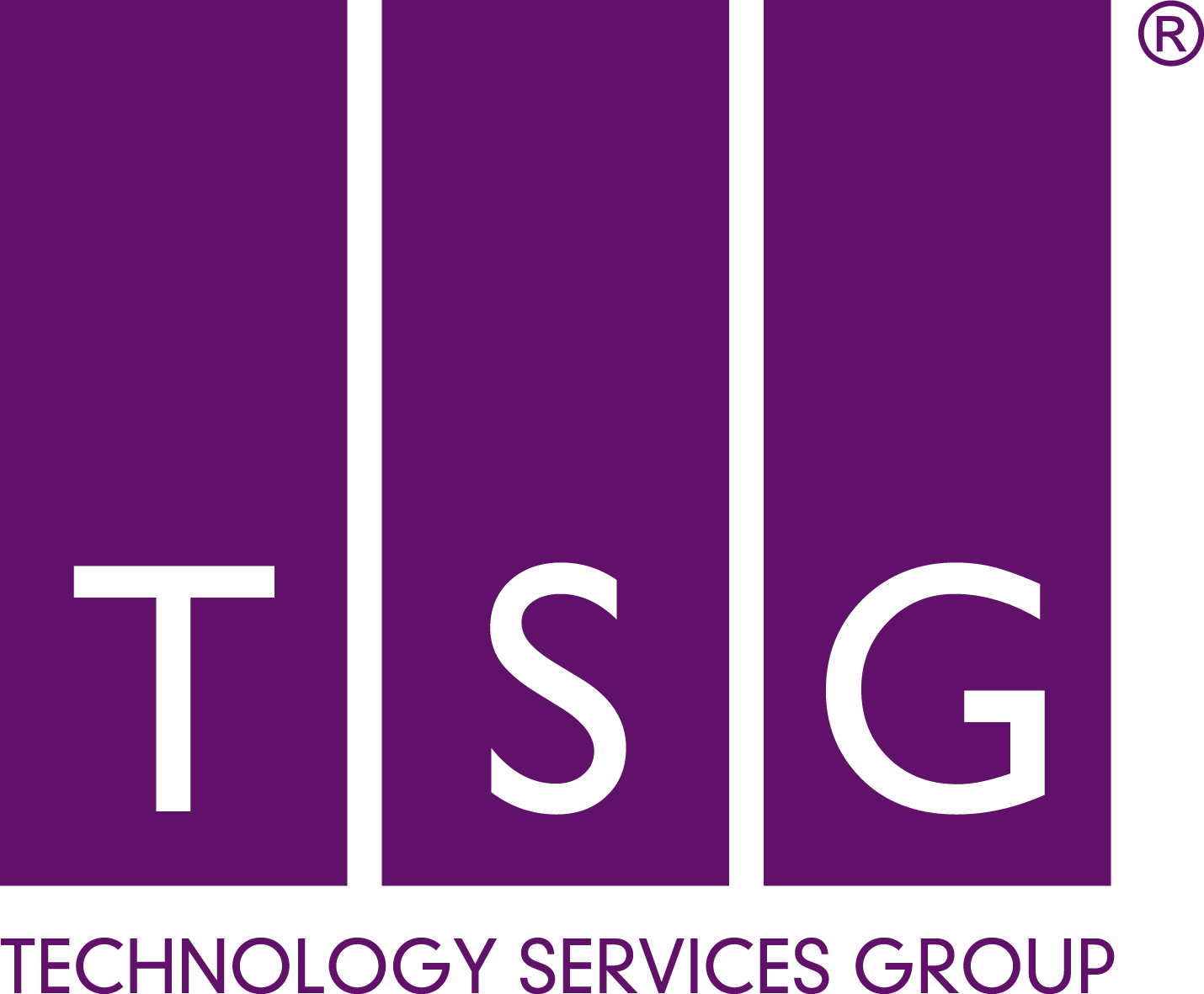 Technology Services Group Ltd Logo